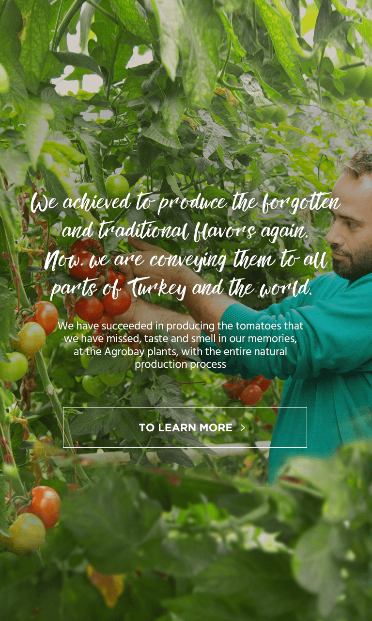 We achieved to produce the forgotten and traditional flavors again. Now, we are conveying them to all parts of Turkey and the world.
